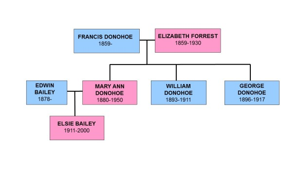 Family Trees - Donohoes of Plymouth